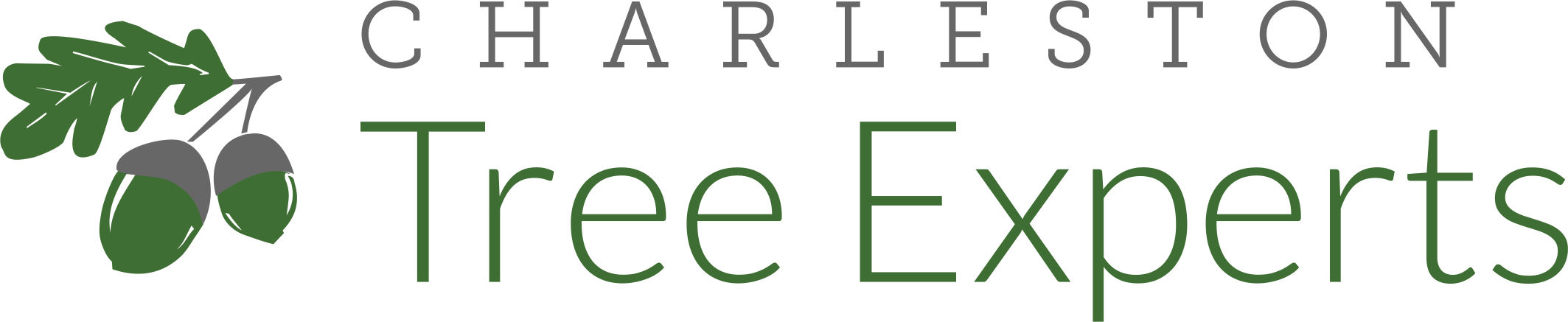 Charleston Tree Experts