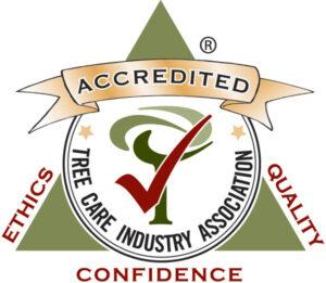 TCIA Certificate