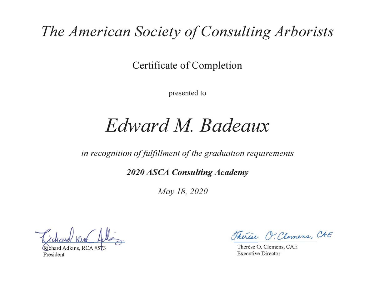 Graduate of the 2020 ASCA Consulting Academy