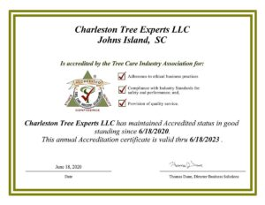 Accreditation Certificate - Charleston Tree Experts LLC