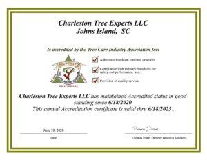 Accreditation Certificate - Charleston Tree Experts LLC