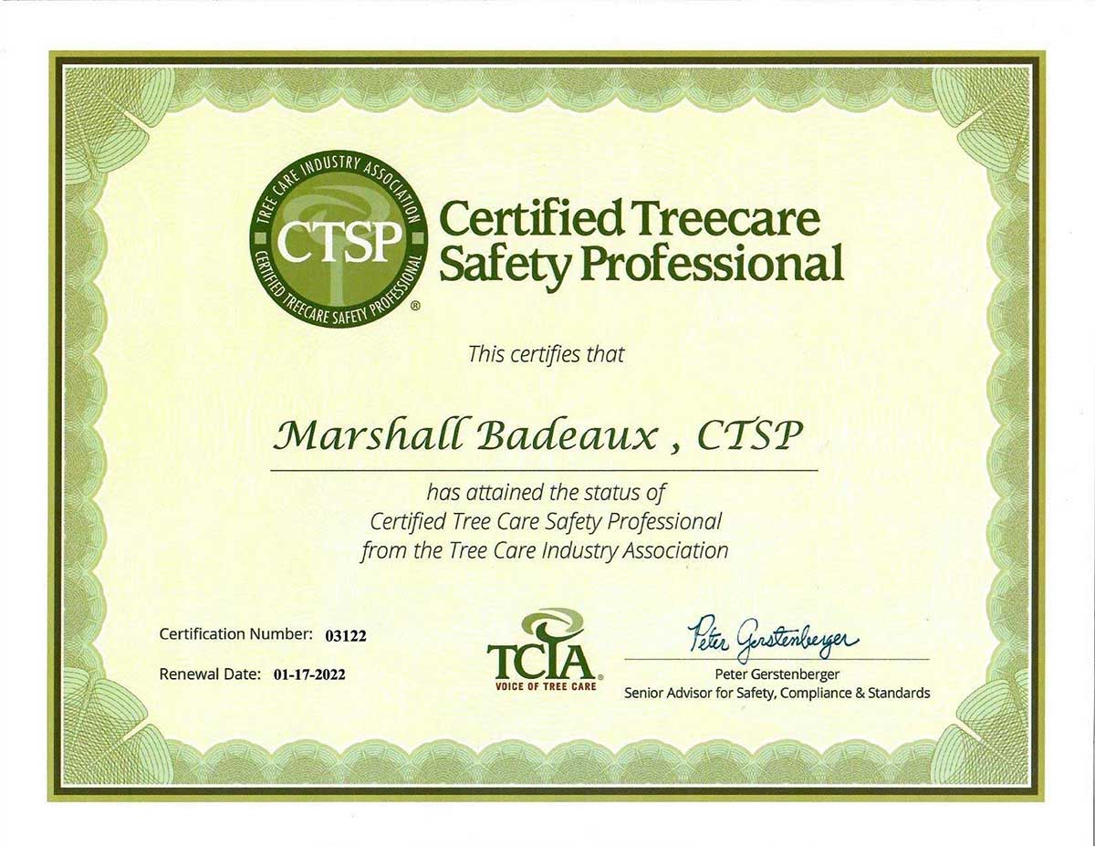 CTSP. Crtified Treecare Safety Professional
