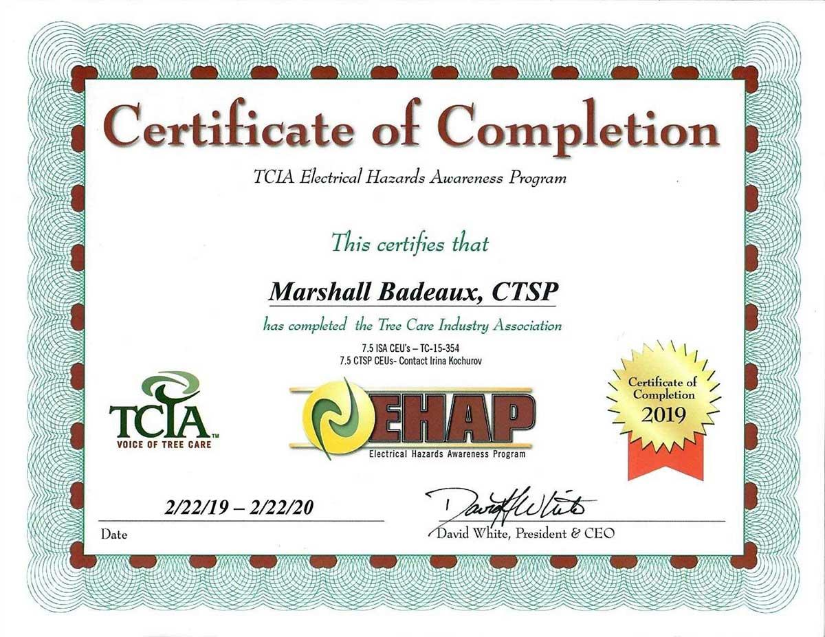 EHAP, Electrical Hazards Awareness Program