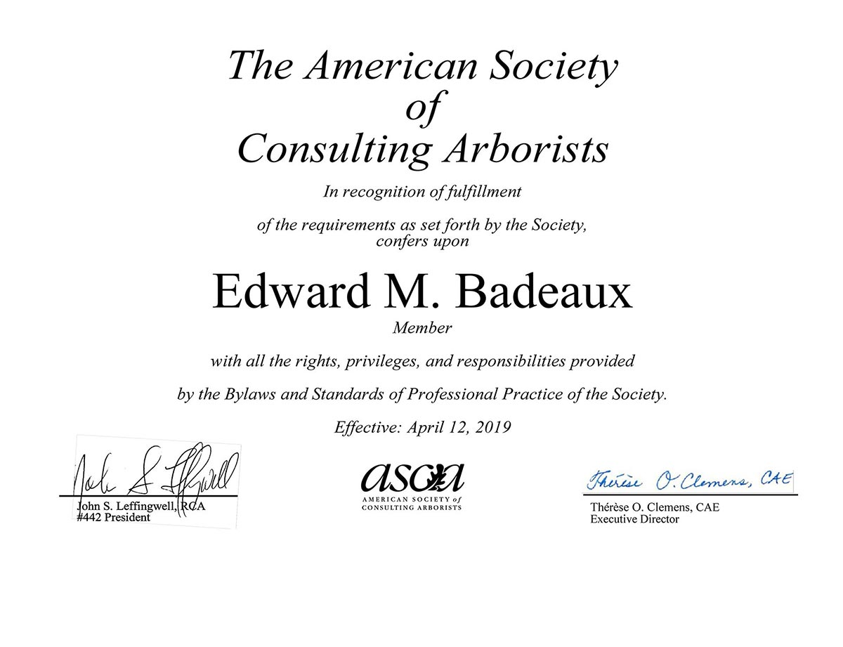 Member. American Society of Consulting Arborist